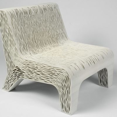 Biomimicry Chair