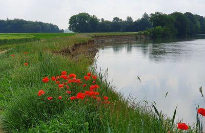08 juin 2021 - La Via Francigena de Châlons-en-Champagne à La Chaussée-sur-Marne