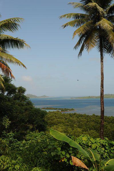 Ponape (Pohnpei),Micronesie,NAN MADOL,les Polynesiens,la culture du poivrier