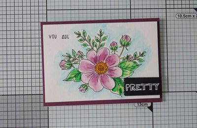 [Polkadoodles] set de tampons Pretty Perfect: technique du Watercolor