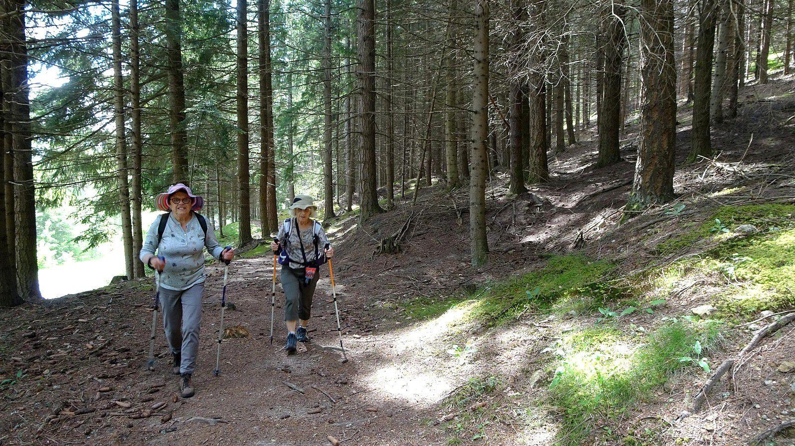 Vacances en Lozère avec mari, Maïka et 2 marcheuses.