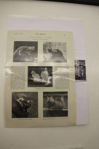 Très belle collection  appartenant à Manuella FERUUT, de cartes postales et lithographies anciennes.