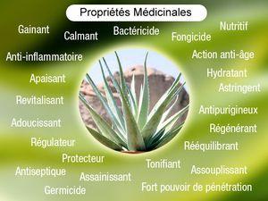 DEFINITION DES PRINCIPALES PROPRIETES MEDICINALES