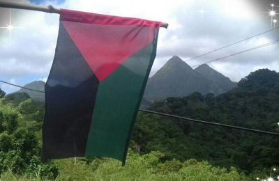 Un drapeau pour leur Mahawtinik?   (Etat de la Caraïbe). Pawols pou ri!