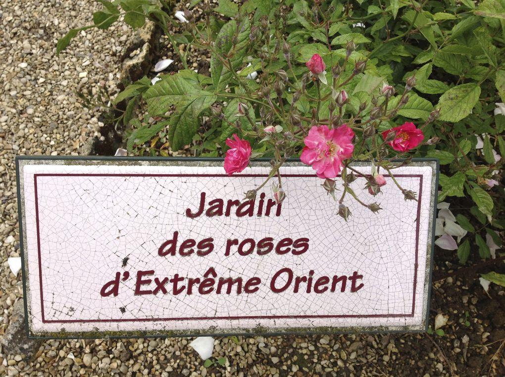 Roseraie du val-de-Marne - 19 photos