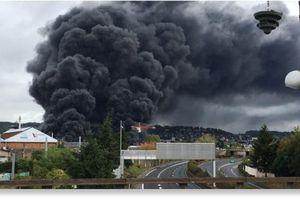 Incendie de Lubrizol : « Il est retombé une pluie de poussière d'amiante »
