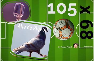 Podcast - Épisode 11 : Les fidèles du football