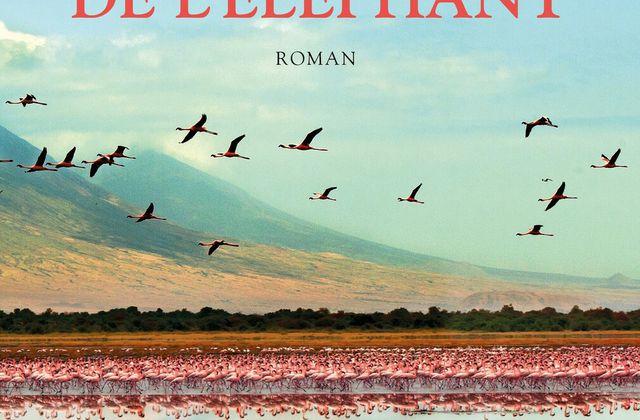 """""""La révérence de l'éléphant"""" de Laura Trompette"""