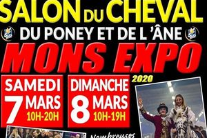 SALON DU CHEVAL 2020 MONS