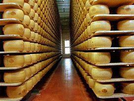 Parmigiano Reggiano : une histoire de lait et d'amour