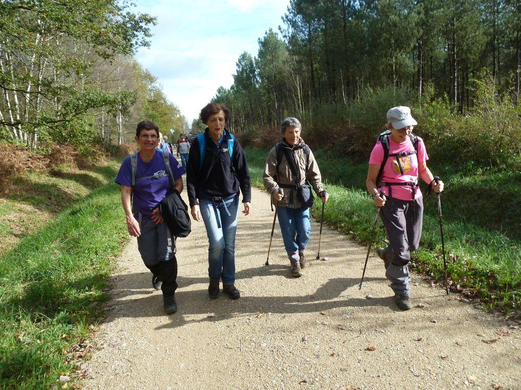 Randonnée de Sucy-Bonneuil à Boissy-Saint-Léger - 22 km.