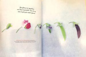 Flow magazine N°32