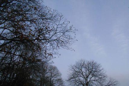 Un automne au Bois Boissel