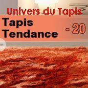 Univers du tapis