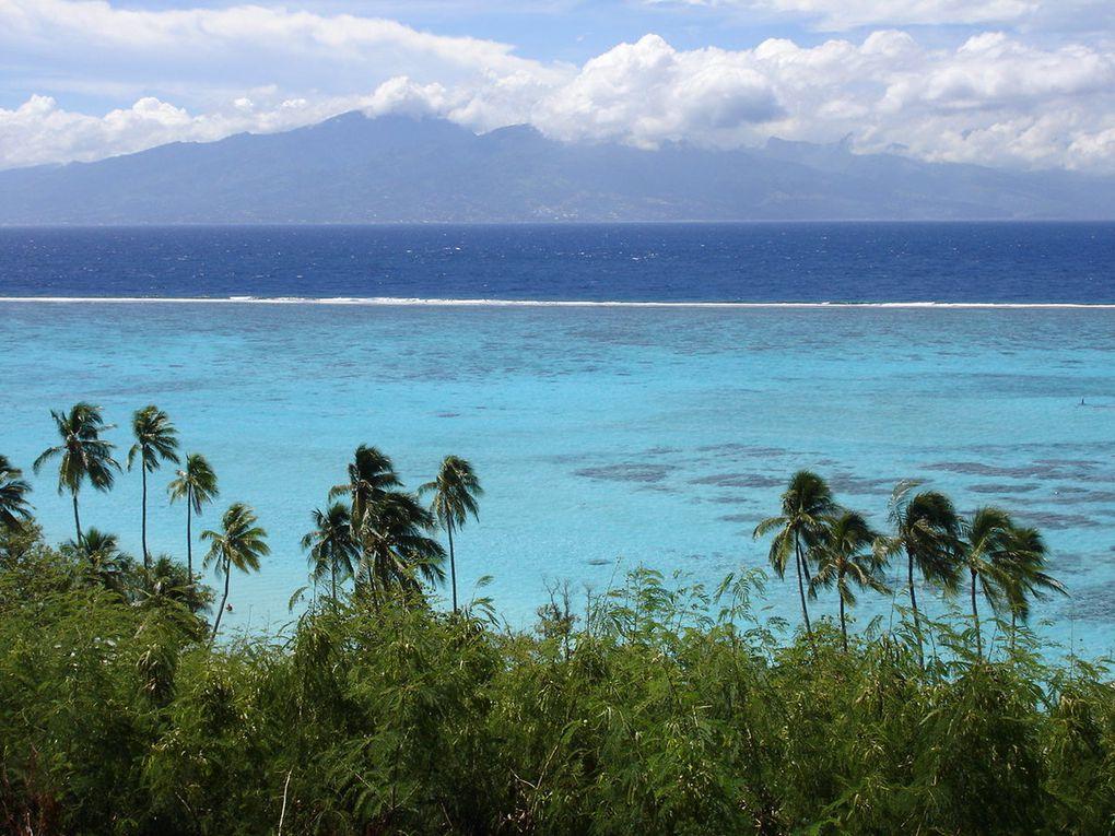 Annie Blin à Tahiti...