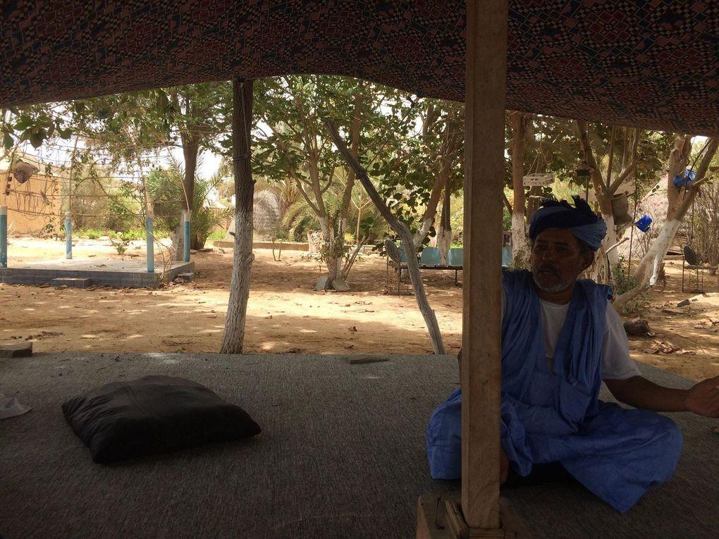 Projet d'élevage de tortues terrestres, « Dbagana House », situé dans la commune d'El Mina, à Nouakchott, en Mauritanie.