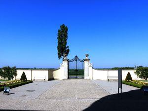 Chateau de NIEDERWEIDEN et la production locale d'asperges.