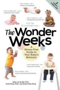 Books to download on laptop The Wonder Weeks: A