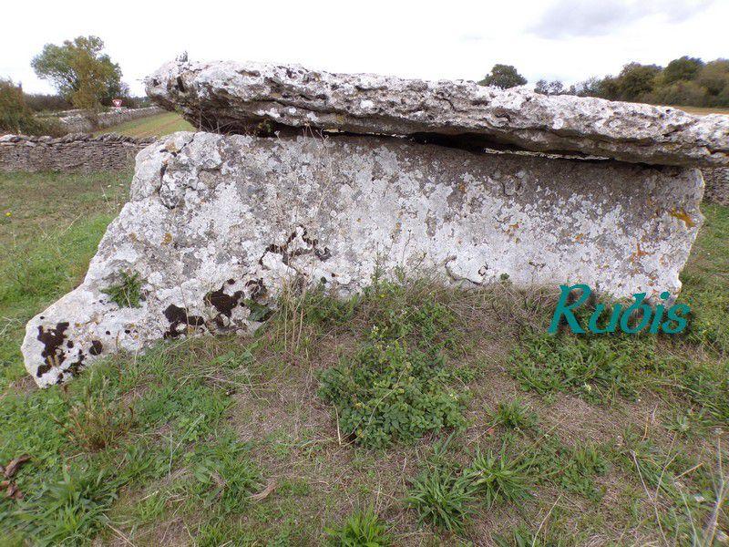 Dolmen  de la Pierre Levée des Sept Chemins, Bougon (79)