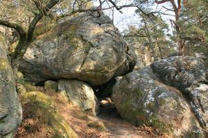 Forêt de Fontainebleau : circuit rando par les gorges d'Apremont, les rochers Cuvier Châtillon et le Mont Ussy