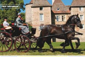 concours d'attelage tradition Messimy 2009