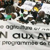 L'œuvre négative du néocolonialisme français et Européen en Afrique. Les Accords de Partenariat Économique (APE) : De la Françafrique à l'Eurafrique