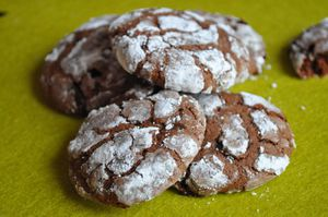 Biscuits moelleux au cacao