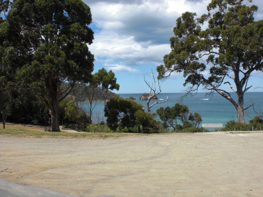 Album - Tasmanien