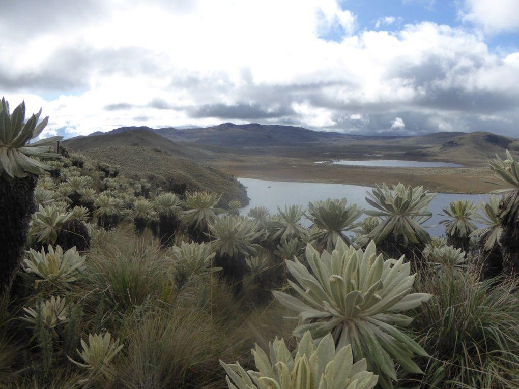 De Quito à la frontière Colombienne