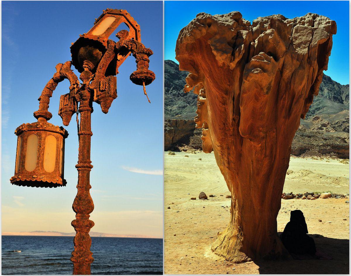Dahab, et au loin, l'Arabie Saoudite - Arbre de pierre, Désert du Sinaï...