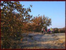 Vivaraide 2008 ....parcours de 30km
