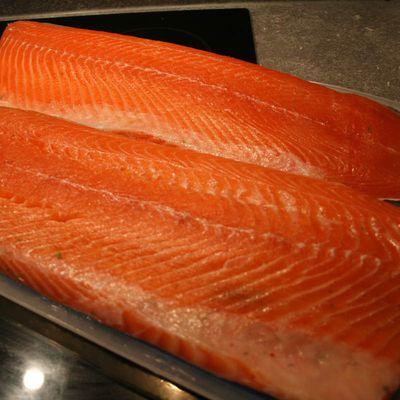 Fumer son poisson : Saumon Fumé à froid au bois de Hêtre