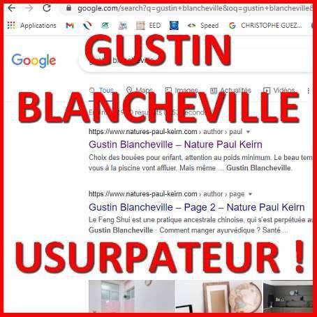 """""""Gustin Blancheville"""" : plagiat et usurpation d'identité numérique"""