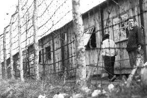 Les internés administratifs de l'Allier (1940-1944) - suite