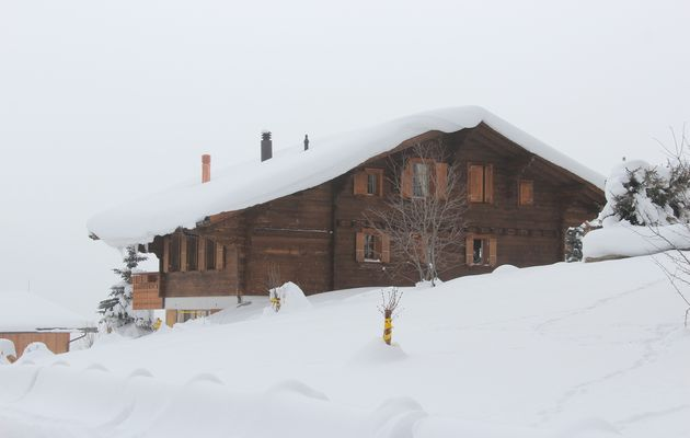 Photos des classes de neige 2015