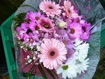 Bonjour fleuri du dimanche !