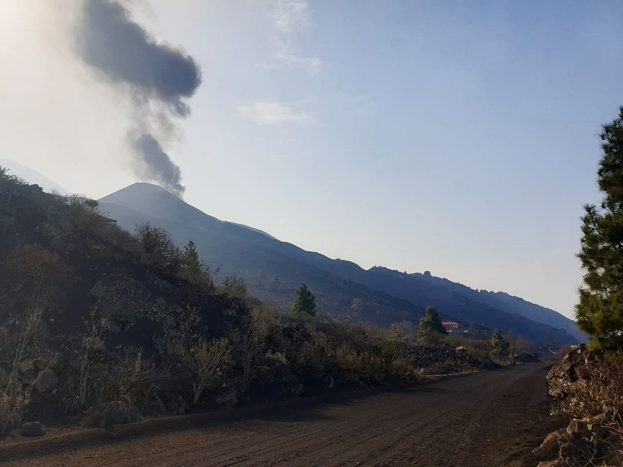 La Palma - pulses of ashes and tremor - 27.09.2021 in the morning - InVolcan