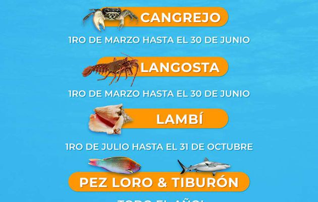 Calendrier des interdictions de pêche en République Dominicaine