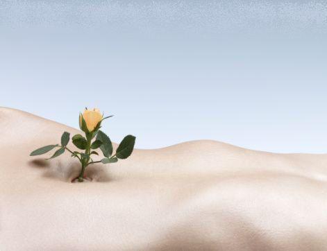 Détox de printemps: la nature se réveille, le corps aussi !