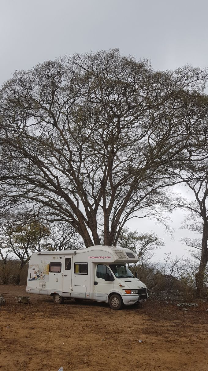 Great Zimbabwe !