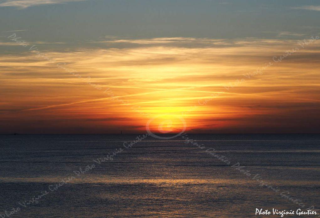 Goelands, bateaux partant à la pêche, soleil couchang, la turballe en or