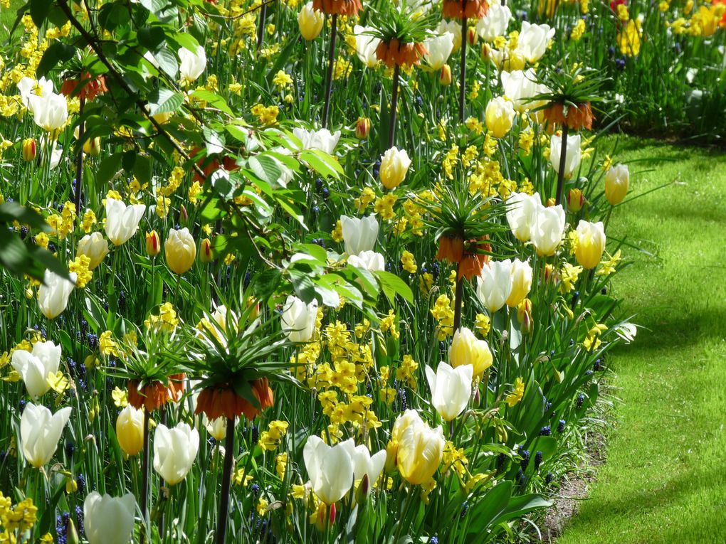 UN WEEK-END PRES DES TULIPES.