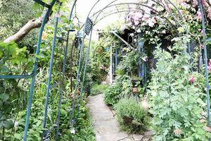 Drôme   Ce week-end, c'est rendez-vous au jardin...