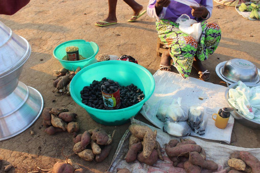 A Exposição de diversos produtos agrícolas da região