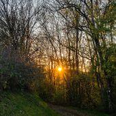 DOMPAIRE, contre-jour au soleil couchant - Photographies VOSGES en PLAINE