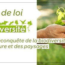 Projet de loi « biodiversité » devant la Commission de l'aménagement du territoire et du développement durable du Sénat : état des lieux sélectif