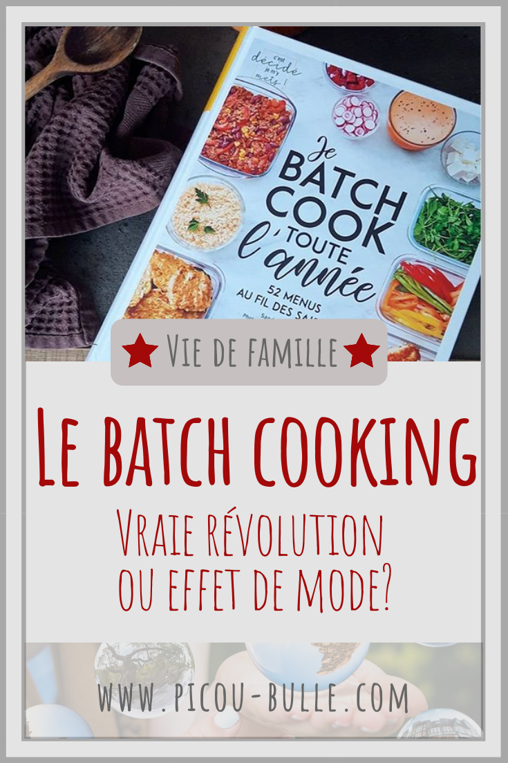blog-maman-picou-bulle-pinterest-batch-cooking