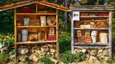 Les miels et les produits de la ruche