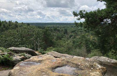 Sortie journée du dimanche 22 aout 2021 Fontainebleau Rocher Cuvier Chatillon Bois-le-Roi