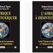 Désintoxiquer l'Afrique, sortir l'Europe de la repentance ! - Riposte Laïque